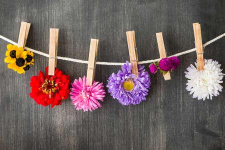 clothesline: summer flowers background Stock Photo