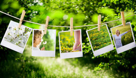 polaroids: prints with natural concepts pictures Stock Photo