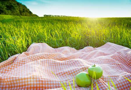 picnic park: picnic outdoors