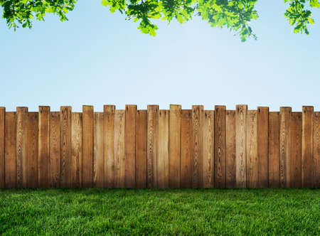 backyards: garden fence