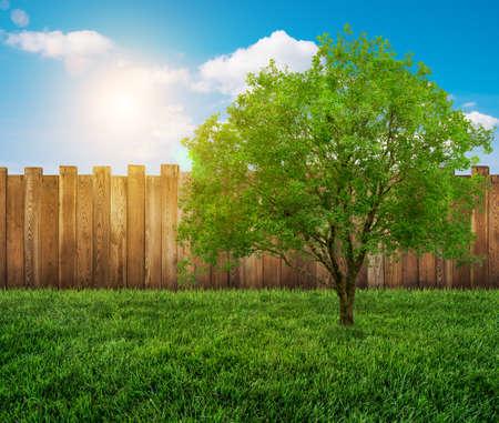garden fence: garden backyard