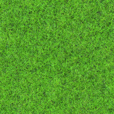 grass texture seamless fantasy idyllic seamless grass texture stock photo 26710485 idyllic seamless grass texture photo picture and royalty free