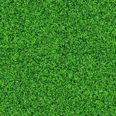 Idyllique transparente texture d'herbe Banque d'images - 26710550
