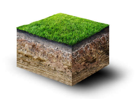 cut grass: cut of soil with grass Stock Photo