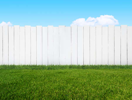 picket fence: white garden fence