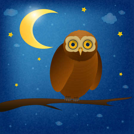 owl at night vector Vector