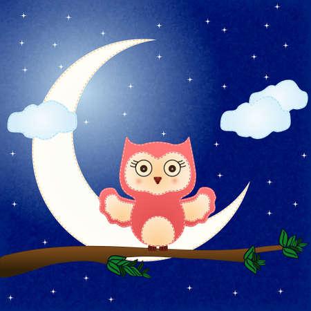 baby owl vector Vector
