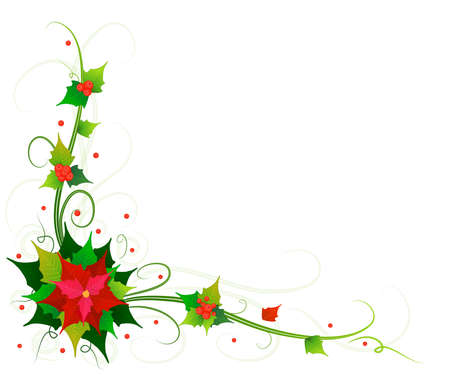 flowers of poinsettia background
