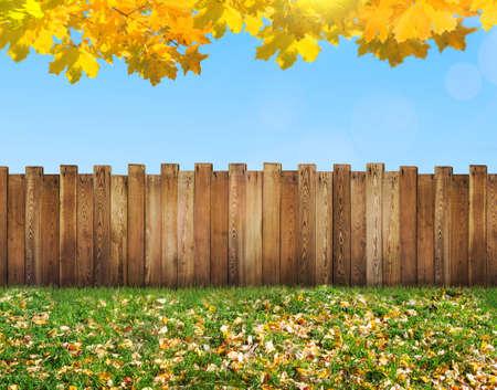 garden backyard at autumn