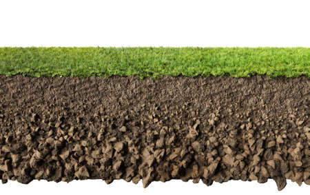 grass and soil profile Stock Photo