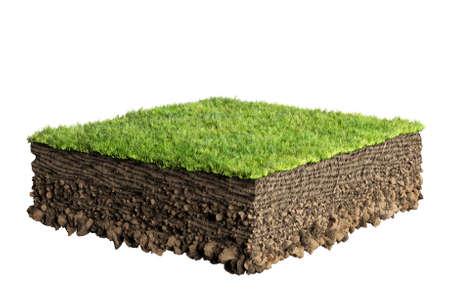 草と土壌断面 写真素材