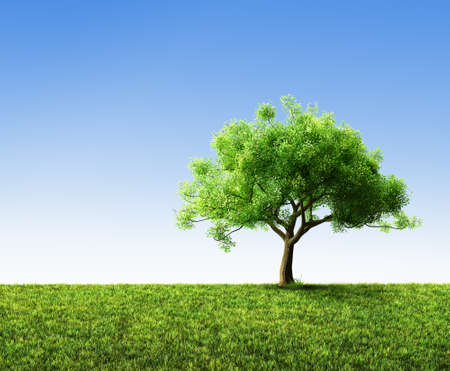 tree with grass Stockfoto