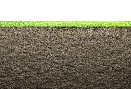 뿌리와 토양과 잔디