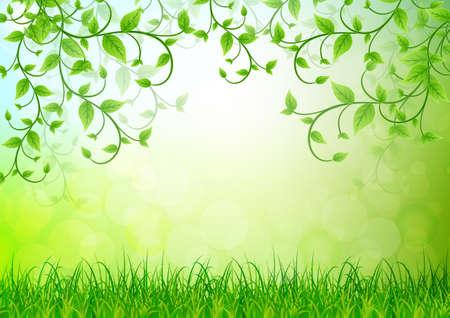 grün: grüne Blätter Hintergrund