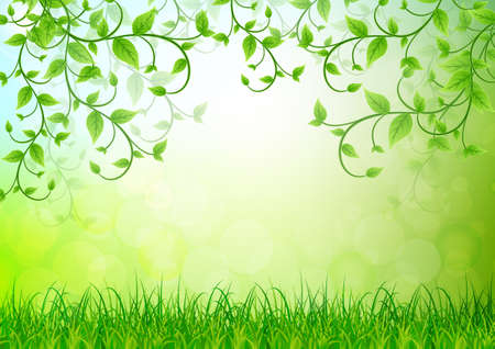 background green: green leaves background Stock Photo