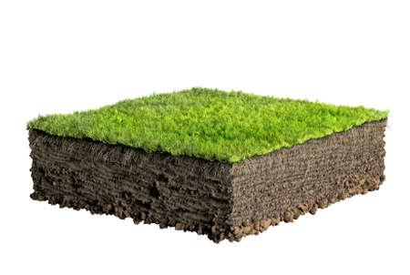 suolo: erba e terra il profilo Archivio Fotografico