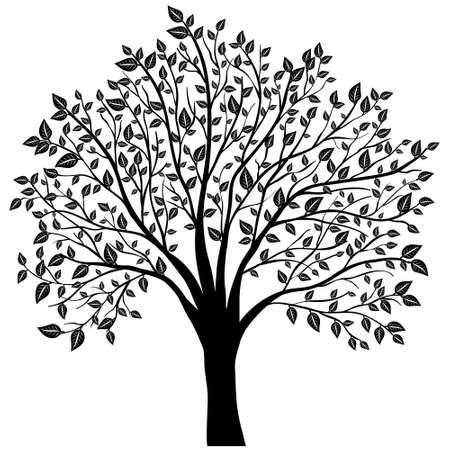 dessin noir et blanc: arbre avec des feuilles vecteur