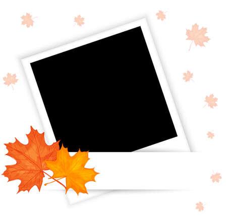 autumn leaves background: autumn photo illustration Illustration
