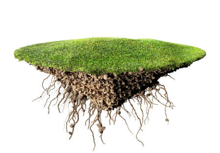 root: grass island and soil Stock Photo