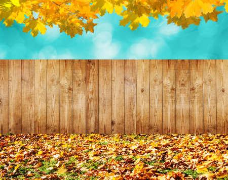 autumn background Imagens - 47039726