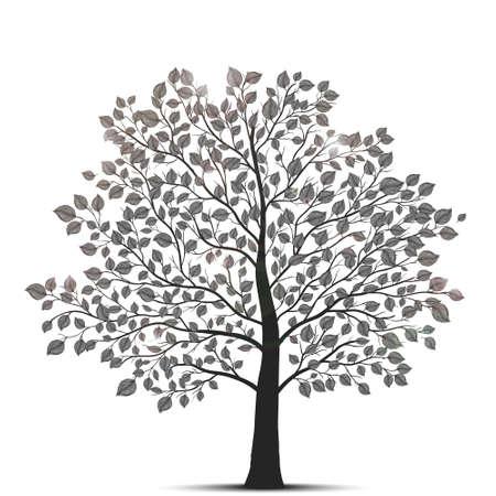tree silhouette: tree isolated