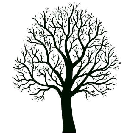 boom geïsoleerde vector Vector Illustratie