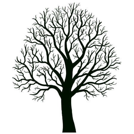 branch silhouette: tree isolated vector