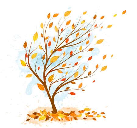autumn tree: autumn tree