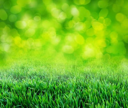 abstrakte muster: grass background