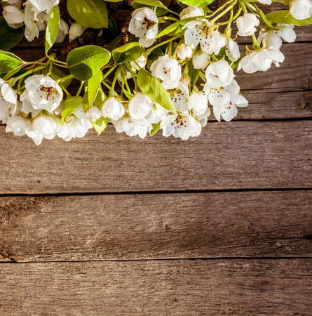 Arrière-plan de printemps avec des fleurs Banque d'images - 51172279