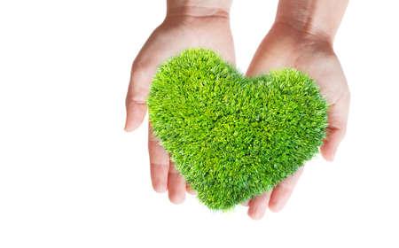 heart hands: green leaves in heart shape on hands
