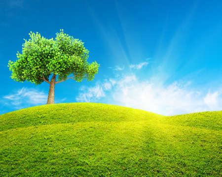 spring  green: Green spring landscape