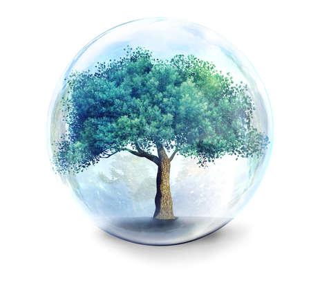 glass sphere: tree in glass ball 3D illustration