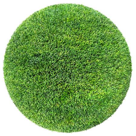 3d ball: grass ball 3D illustration