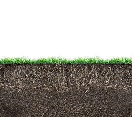 grond met wortels en gras geïsoleerd