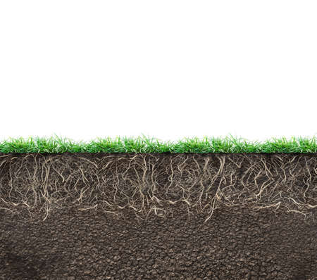 soil with roots and grass isolated Stock Photo