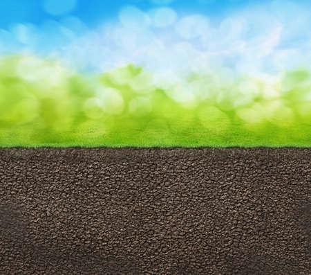 raices de plantas: textura del suelo ilustración perfil 3D