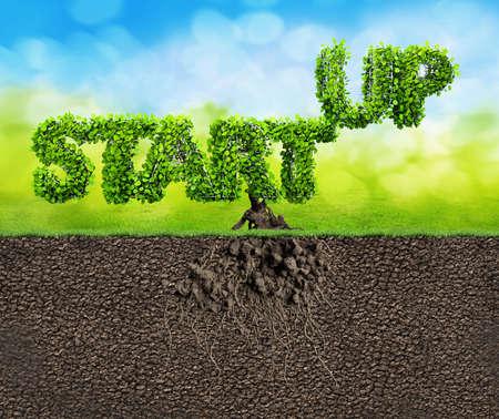 innovating: start up business 3D illustration