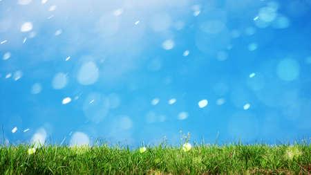 잔디 자연 배경