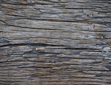 rough: old wood background texture