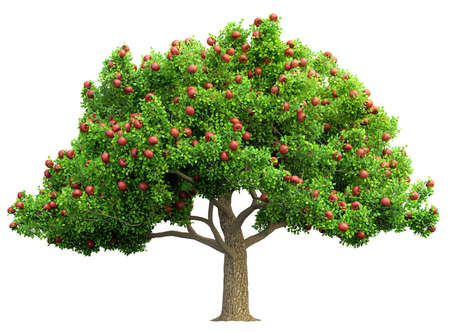 red apple tree isolated 3D illustration Stockfoto