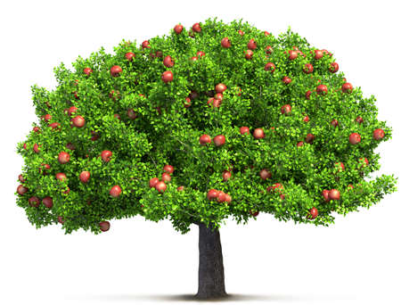 red apple tree isolated 3D illustration Banque d'images