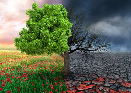 ecologisch concept met boom en klimaat veranderend landschap