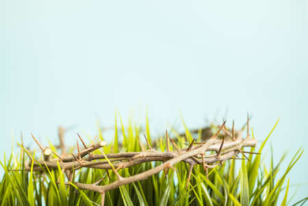 crown of thorns and grass easter background
