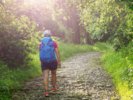 girl with backpack travels along forest in Camino de Santiago Stok Fotoğraf