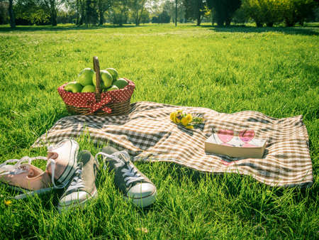 picnic table covered with checkered tablecloth and picnic basket in park outdoors