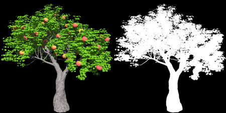 red apple tree isolated with mask for easy isolation from background, 3D illustration