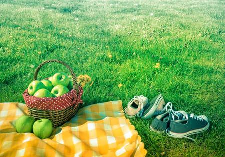 picnic basket and checkered picnic blanket