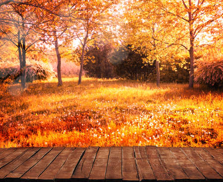 Old wooden table with autumn orange leaves, autumn background
