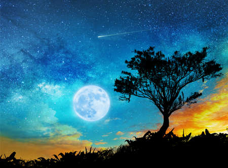 magic night lanscape with starry sky, full moon and tree Stock fotó - 129237958